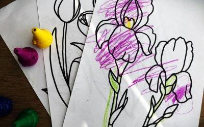 Omalovánky – Květiny