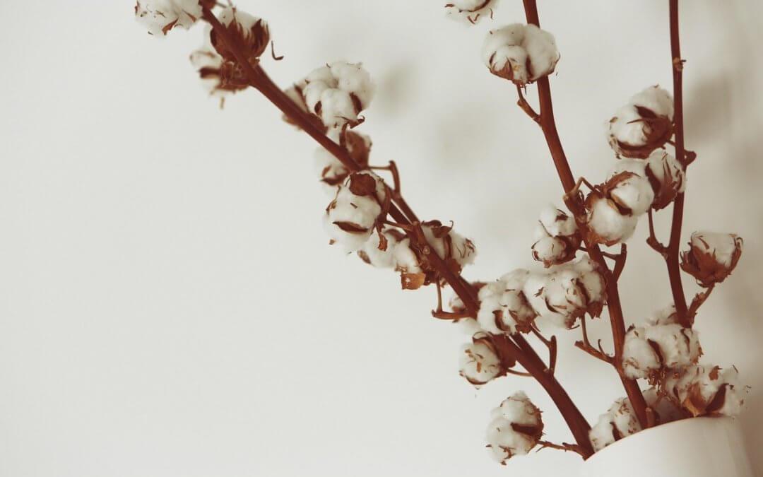 DIY: Bavlna do vázy